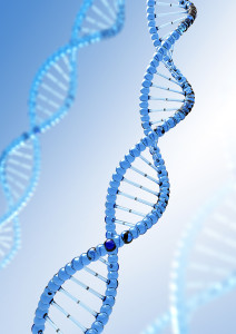 fever syndrome genetic testing